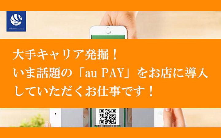 aupayの代理店募集 バーンコンサルティングソリューショングループ株式会社